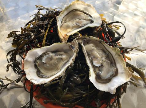 Huîtres Le Priol - Huîtres Creuses De Bretagne N°4 - Bourriche De 100