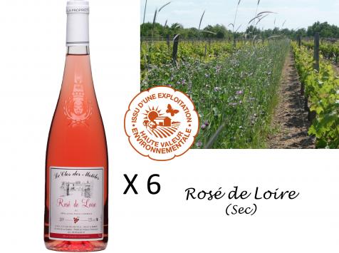 Le Clos des Motèles - Aoc Rosé De Loire 2020. 6 Bouteilles
