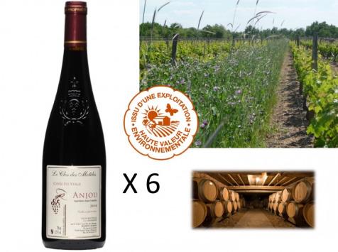 Le Clos des Motèles - AOC Anjou Rouge 2019 : Cuvée Sainte-Verge (6 Bouteilles)