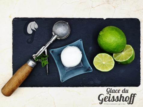 Glace du Geisshoff - Citron Vert Crème Glacée Fermière au Lait de Chèvre 750 ml