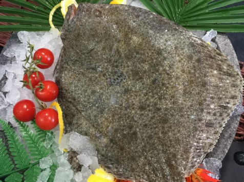 Poissonnerie Le Marlin - Turbot - 700g