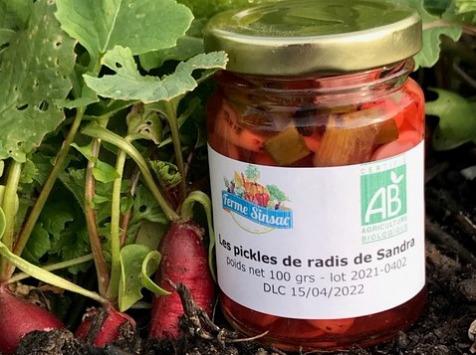 Ferme Sinsac - Pickles de Radis Bio - 100 g