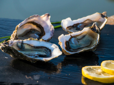 Les huîtres Gaboriau Frères - 36 Huîtres Fines De Claire Marennes Oléron N°3