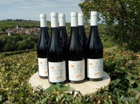 Sancerre Doudeau-Leger - Vent d'Ange - Vin de Pays du Val de Loire Rouge IGP 2019 - 6 Bouteilles