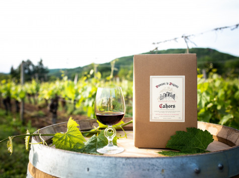 Domaine la Paganie - Vin Rouge en BIB 5 litres - AOC Cahors