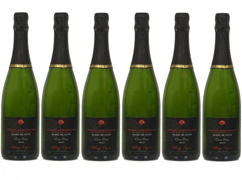 Domaine TUPINIER Philippe - 6 Bouteilles Crémant De Bourgogne Blanc De Noirs