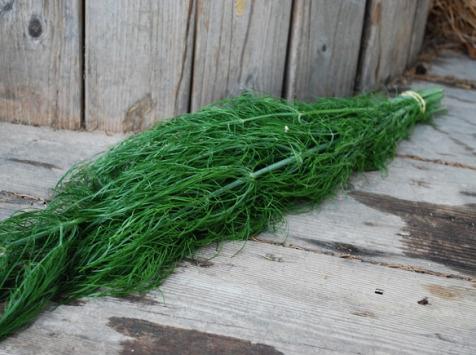 La Boite à Herbes - Fenouil Sauvage 100g