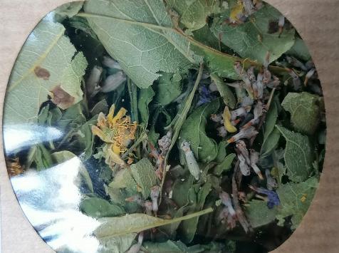 Les Jardins du Mas de Greil - Tilleul-menthe-lavande, Tisane Composée