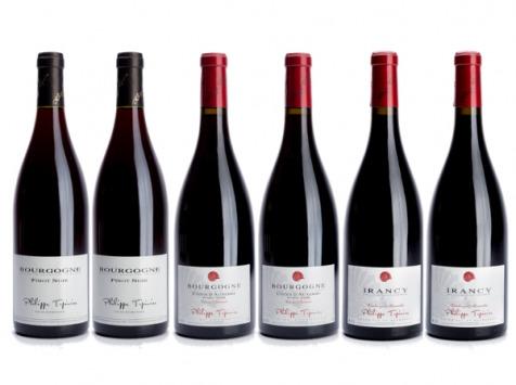 Domaine Tupinier Philippe - Lot de 3 vins Rouges : Bourgogne 2015, Côte d'Auxerre 2016, Irancy AOC 2018 - 6 bouteilles