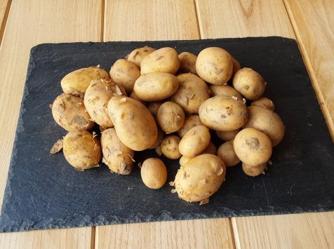 Gourmets de l'Ouest - Pommes de terres primeur de Saint-Malo