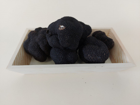 ALENA la Truffe d'Aquitaine - Truffe Noire Du Périgord FraicheTuber Melanosporum - 1ère Catégorie - 250g