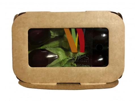 Maison Sales - Végétaux d'Art Culinaire - 19- Mini Aubergine - 4 Pièces