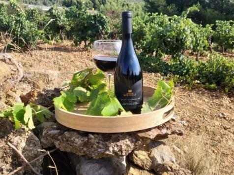 Domaine Miradels - AOC Corbières - Vignes Centenaires, Domaine Miradels 2017- 6 bouteilles