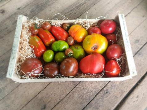 EARL Langevine - Tomate Panachée Population 4kg