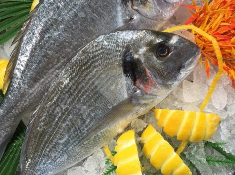 Poissonnerie Le Marlin - Dorade Royale Bio - 500g - Vidée