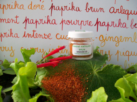 HERBA HUMANA - Piment Antillais Brun Bio 3 g