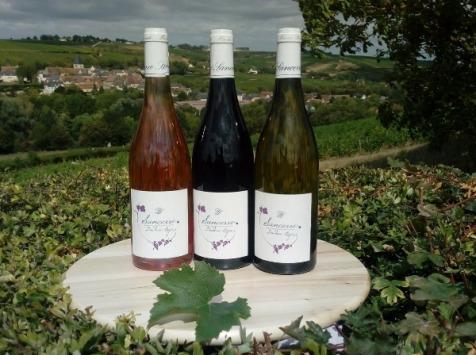 Sancerre Doudeau-Leger - Coffret Découverte Trio Sancerre : Blanc - Rouge - Rosé
