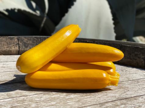 La Boite à Herbes - Courgette Jaune - 1 Kg