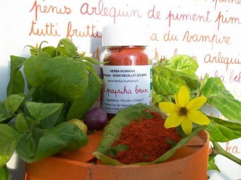 HERBA HUMANA - Paprika Brun Cultivé en France 35g