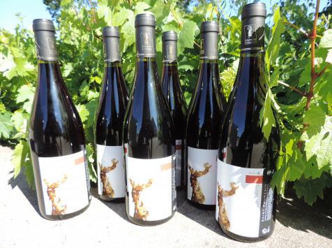 Domaine des Bourrats - Saint Pourçain AOC Rouge Tradition - 6 bouteilles