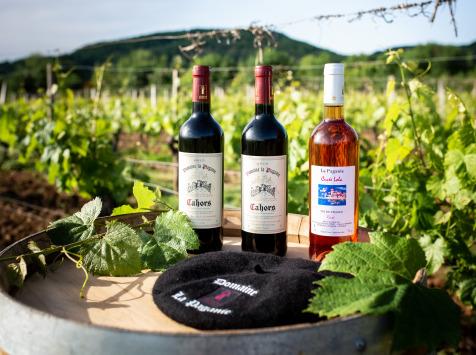 Domaine la Paganie - Coffret de 3 Bouteilles : 2 Rouges AOC Cahors et 1 Rosé Vin de France