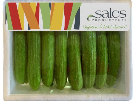 Maison Sales - Végétaux d'Art Culinaire - 17- Mini Concombre - 14 Pièces Minimum