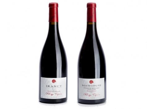 Domaine Tupinier Philippe - Lot De 2 Vins Rouges : Côte D'auxerre Rouge 2016 Et Irancy Aoc 2018 - 2 Bouteilles