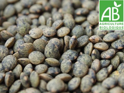 Mon Petit Producteur - Lentilles Vertes Bio [1kg]