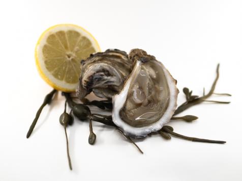 KONKAVEN - Huîtres Creuses De Cancale Prestige N°4 - 1,5kg