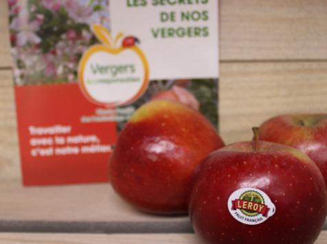 Le Châtaignier - Pommes Choupette Bio - 1 Kg