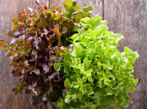 La Boite à Herbes - Lot Salade Batavia Verte Et Feuille De Chêne Bio