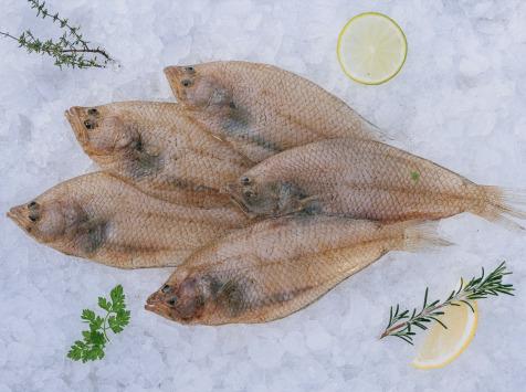 Côté Fish - Mon poisson direct pêcheurs - Limandes 500g