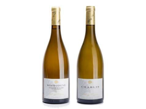 Domaine Tupinier Philippe - Lot De 2 Vins Blancs : Chablis AOC et Côte D'Auxerre Blanc - 2 Bouteilles De 75 Cl