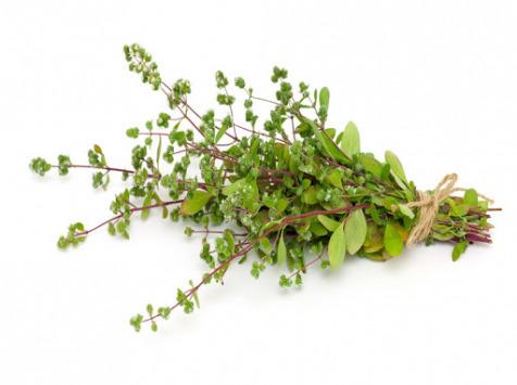 La Boite à Herbes - Origan Frais - Sachet 100g