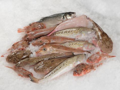 Côté Fish - Mon poisson direct pêcheurs - Kit Pour La Bouillabaisse