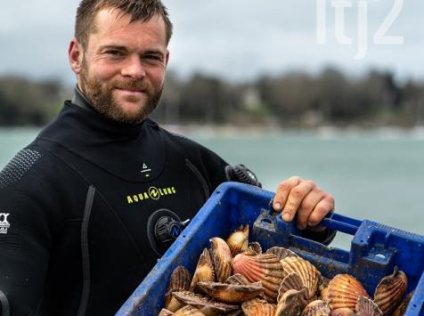 LTJ2 - Pêche en plongée - Coquille Saint-jacques De Plongée De Saint Malo - 3kg - Vivantes