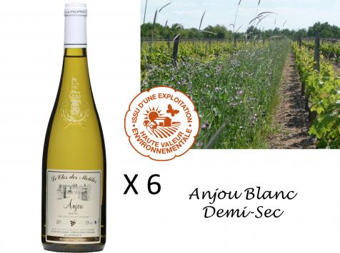 Le Clos des Motèles - Aoc Anjou Blanc Demi-sec 2020. 6 Bouteilles