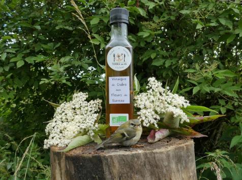 Terres En Vie - Vinaigre De Cidre Bio Aux Fleurs De Sureau