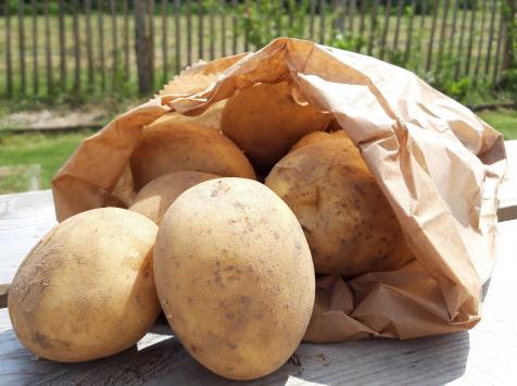 Le Châtaignier - Pomme de terre Colomba polyvalente - 14 Kg