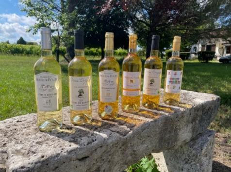 Vignobles Fabien Castaing - Lot Blancs Sucrés et Jus de Raisin