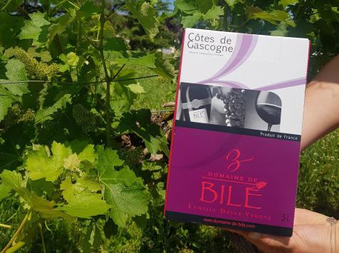 Domaine de Bilé - Fontaine à Vin BIB Rouge Non Boisé IGP Cotes de Gascogne 5 Litres