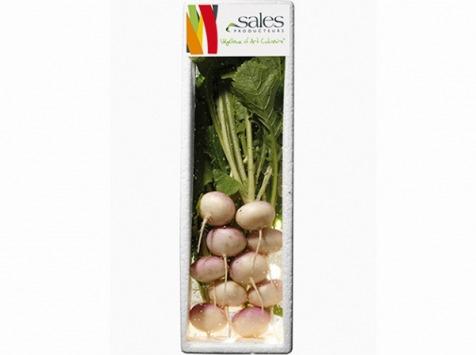 Maison Sales - Végétaux d'Art Culinaire - Mini Navet - 10 Pièces