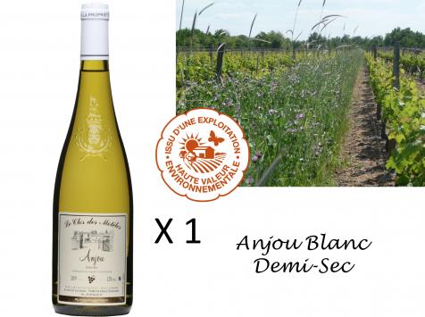Le Clos des Motèles - Aoc Anjou Blanc Demi-sec 2019. 1 Bouteille