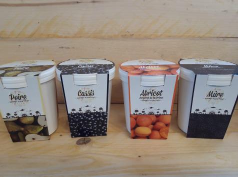 La Ferme du Logis - Assortiment de sorbets : Poire, Cassis, Abricot et Mûre