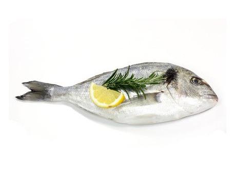 Ma poissonnière - Daurade Royale - Lot De 1 Kg