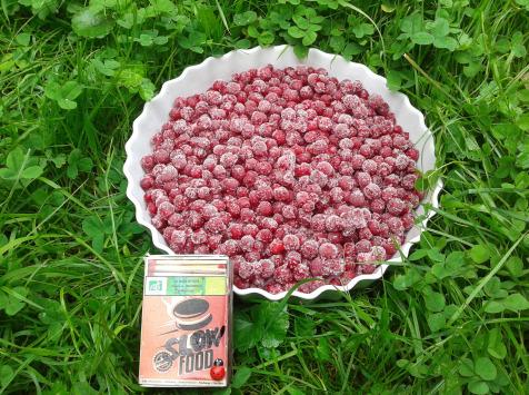 Les Jardins de Karine - Groseilles rouges surgelées - 500g