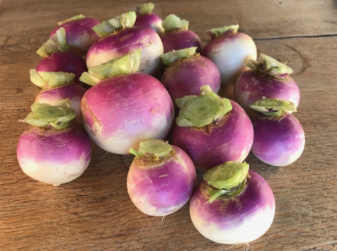 La Ferme du Polder Saint-Michel - Navet violet Bio 500g