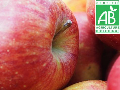 Mon Petit Producteur - Pomme Ariane Bio - 3kg