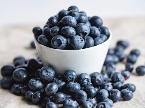 La Ferme des petits fruits - Myrtilles BIO - 6kg