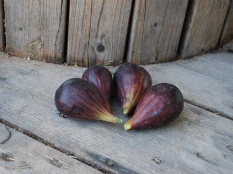 La Boite à Herbes - Figue Noire - 250g